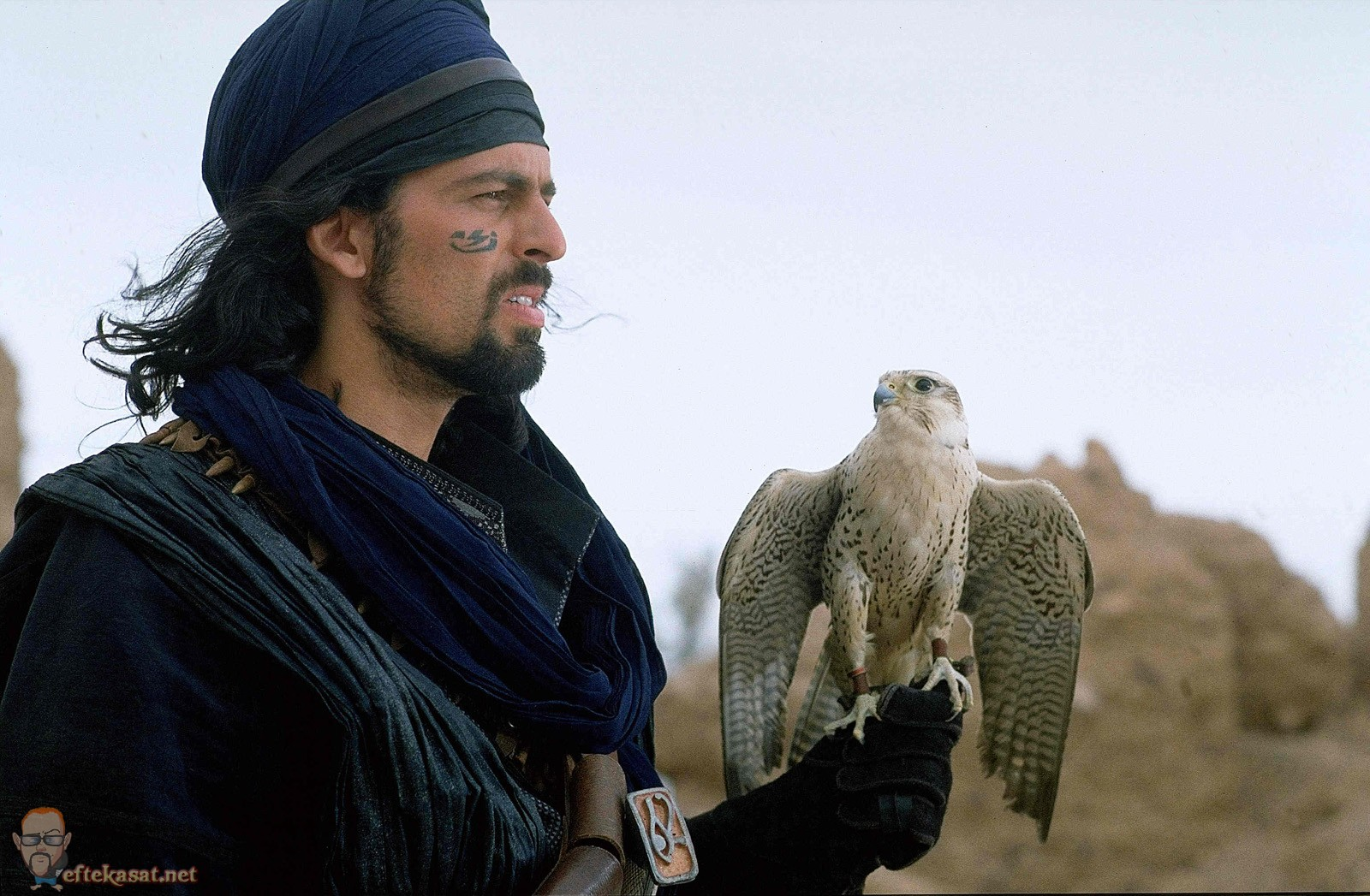 know your quotthat guyquot oded fehr everything action