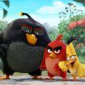 angry_birds_movie1